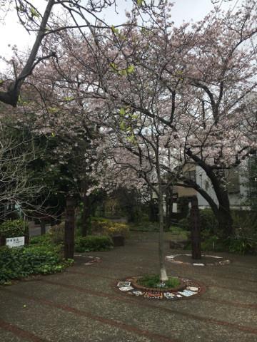 平成29年5月1日オープン予定の住宅型有料老人ホーム「ライフフォレスト大倉山」へ行きました